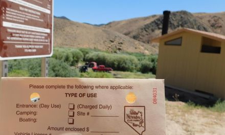 Campsites Available at Elbow of East Walker River