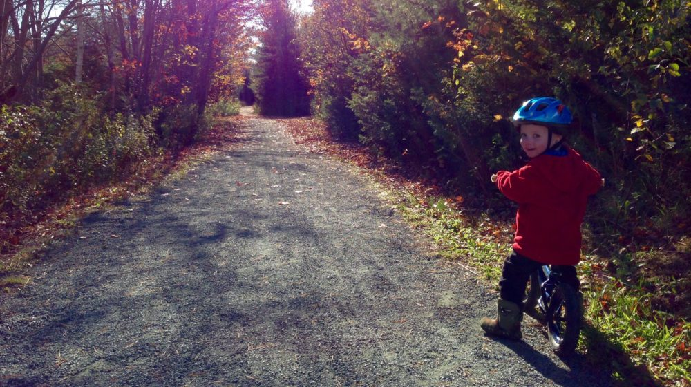 McIntosh Run Trails are Open!