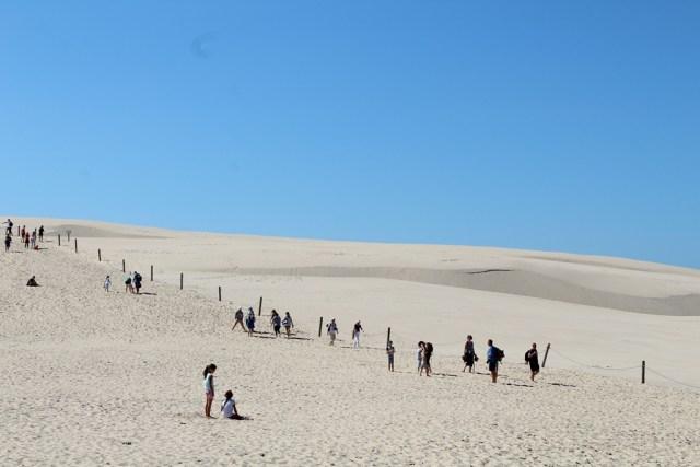Dunes in Łeba