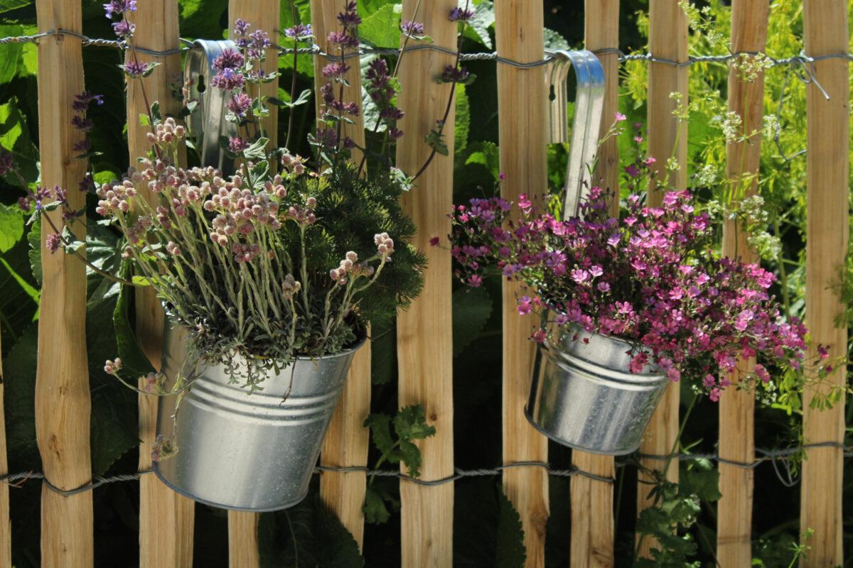 Flowers in metal pots