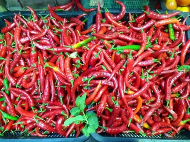 Vibrant red chilis.