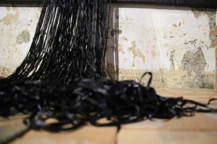 """""""Horizonte Espinoso"""" es el nombre de la nueva exposición que ofrecerá el Museo de Arte y Diseño Contemporáneo"""