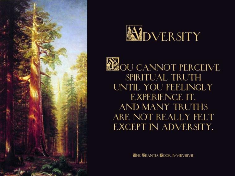 Adversity_1024