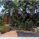 Landscaping Contractors in San Diego