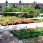 Landscaping Services in San Diego