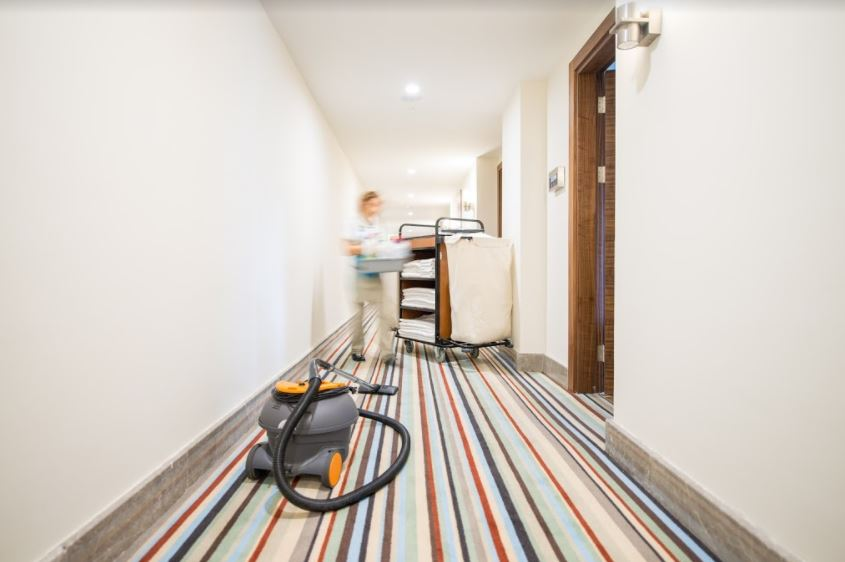 Professional Carpet Cleaning Services in San Diego