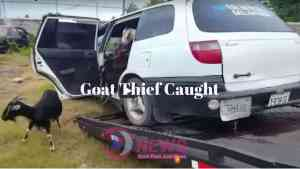 Other Criminal Charges to be Laid Against Goat Thief  Caught with 23 Stolen Goats in Motor Car