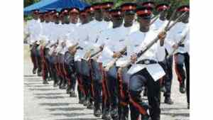 About 300 Cops Promoted