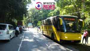 Bus Driver Narrowly Missed Death after Vehicle Plunged over Long Hill