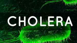 Test Results Show no Cholera in Jamaica