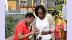 1000 Trees to Be Planted In East Rural St. Andrew Constituency