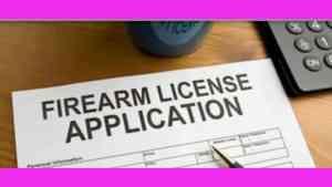 Opposition Demands Audit of 29 Gun Licenses