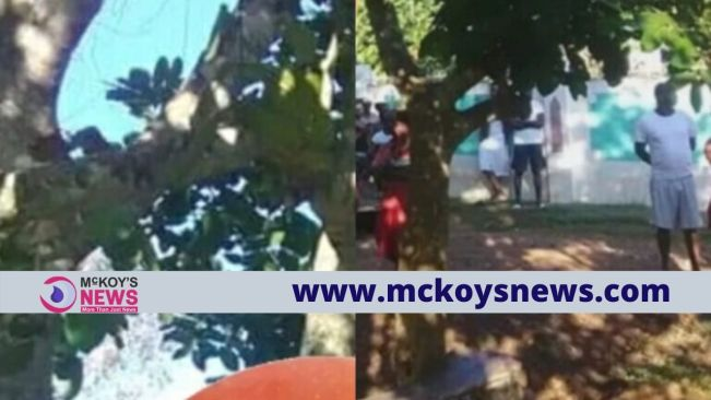 29-Year-old Clarendon Man Commits Suicide