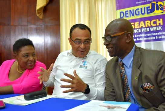 Plans Outlined For National Dengue Clean Up