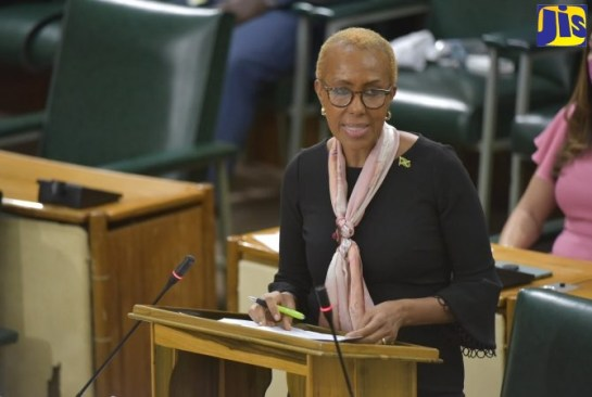 House Passes Data Protection Bill