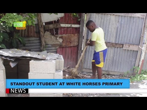 Standout Student At White Horses Primary, St Thomas, Heads to Campion
