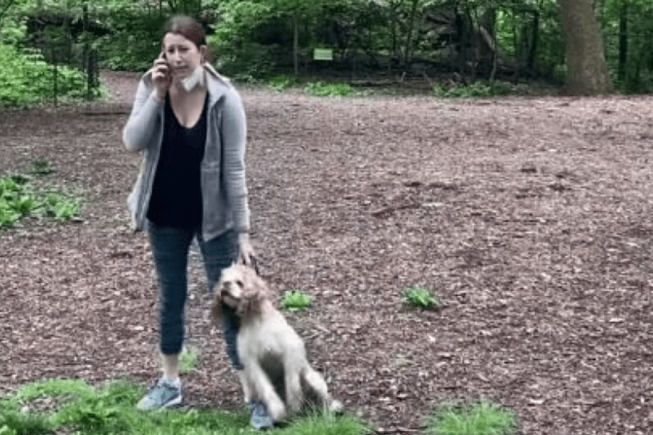 White woman charged after racist Central Park confrontation