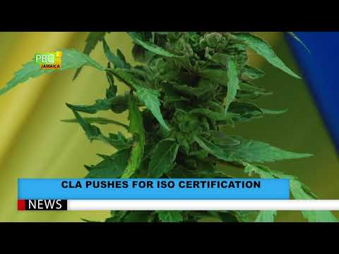 CLA Pushes For ISO Certification