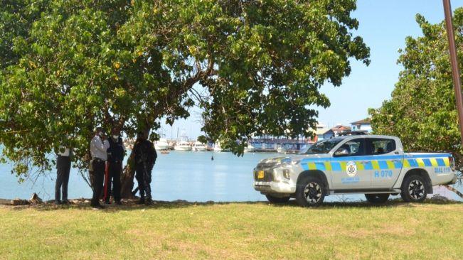 Vendor's body found along Howard Cooke Boulevard