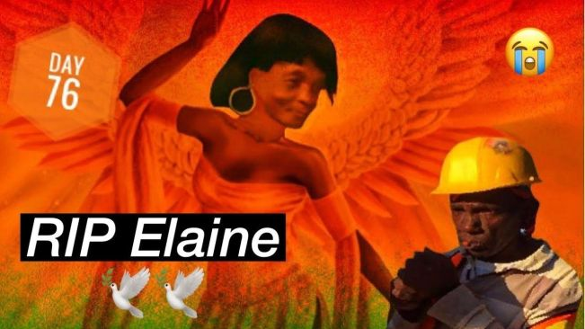 Bawdacat wife Elaine is dead