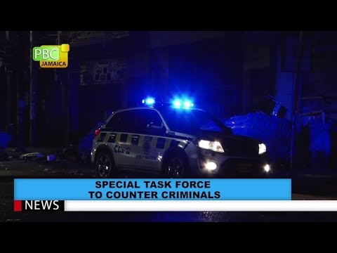 Special Task Force To Counter Criminals