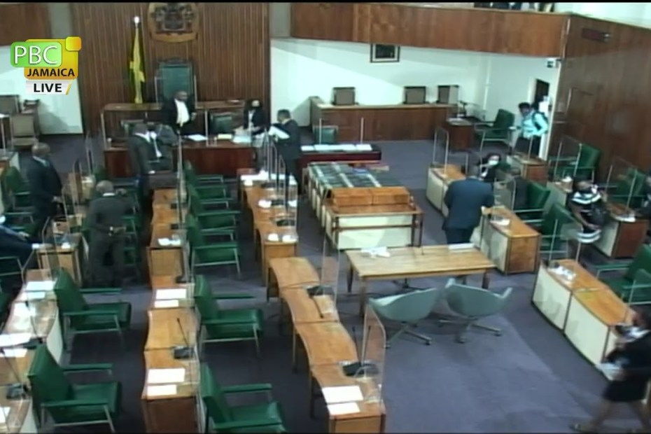 Public Accounts Committee – January 19, 2021