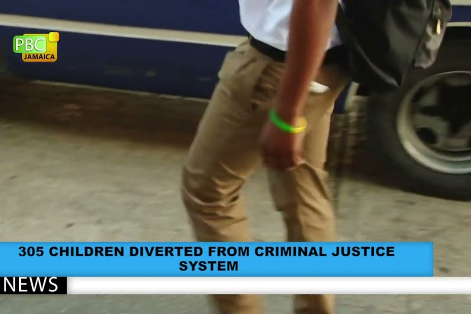 305 CHILDREN DIVERTED FROM CRIMINAL JUSTICE  SYSTEM