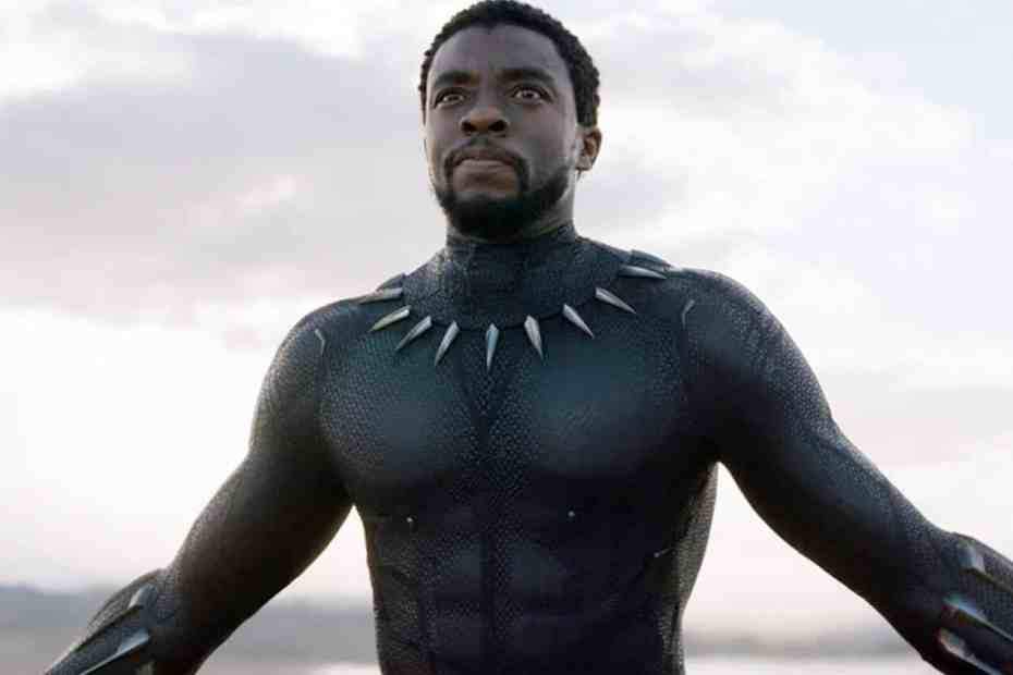 Black Panther fans launch petition to recast T'Challa
