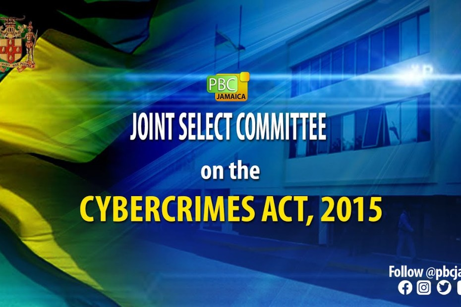 Joint Select Committee on The Cybercrimes Act, 2015 – June 16, 2021