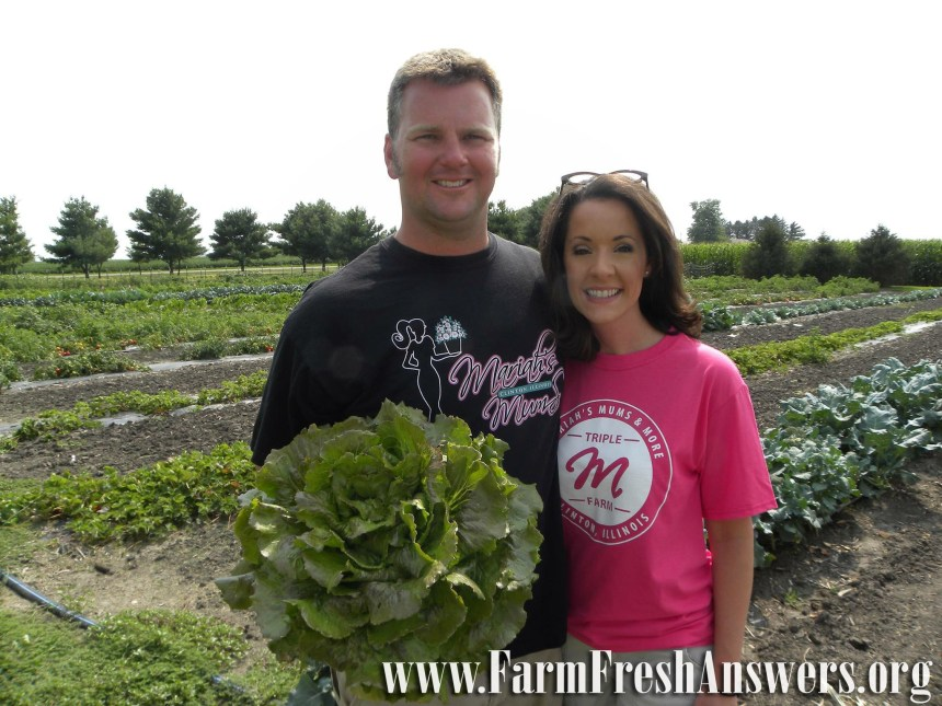Greg & Mariah Anderson grow mums & fresh produce at Triple M Farm near Clinton in DeWitt County. The triple m's stand for Mariah's Mums & More.