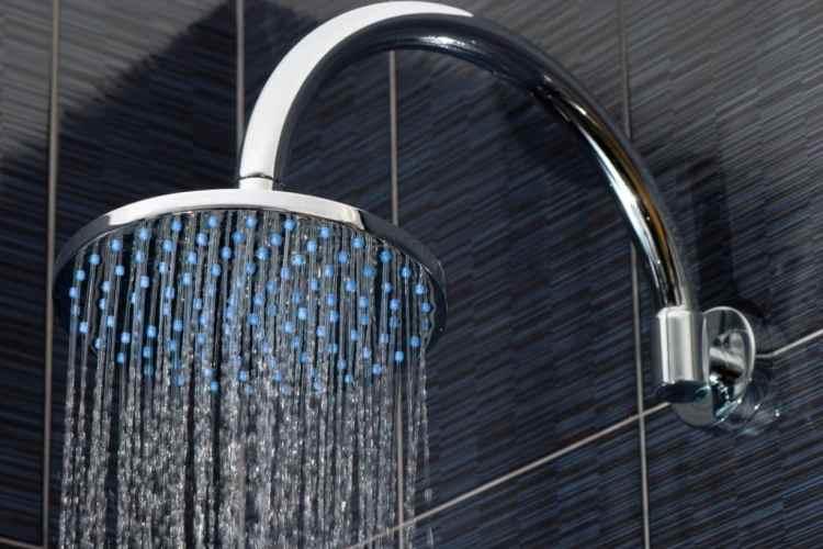 spa shower heads tallahassee fl