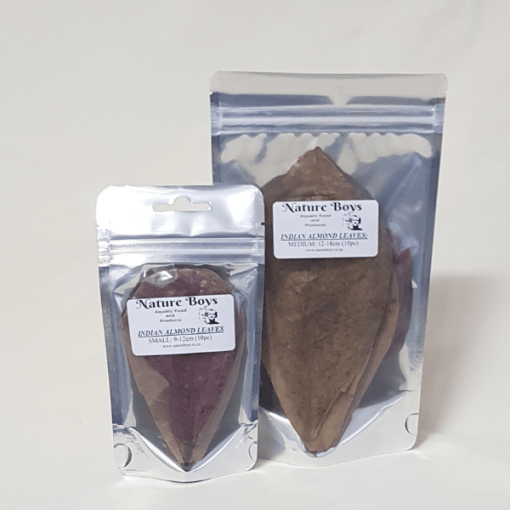 Nature Boys Indian Almond Leaves