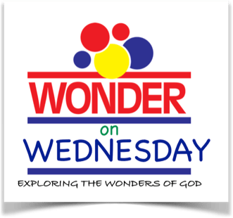 Wonder On Wednesday Returns