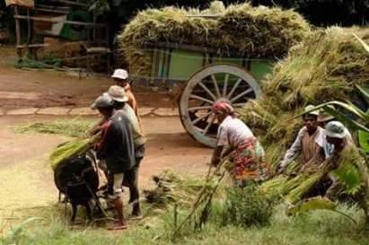 Malagasy ve ianao a1
