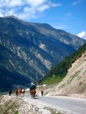 Kashmiri horseman