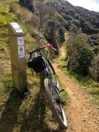Wellington's extensive MTB Trail Network