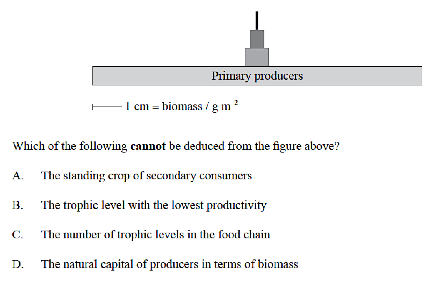 What Are Ecological Pyramid Structures