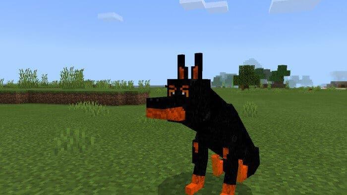 Dogs Addon