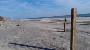 Flying Point Beach, December 2012