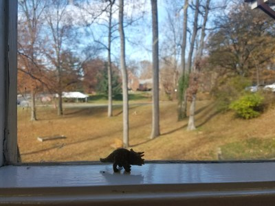 toy triceratops near window