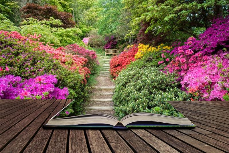 Book in a garden