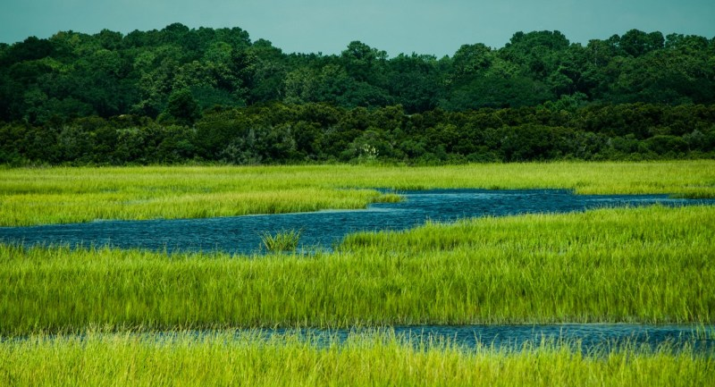 Marshes at Sunset Beach, NC