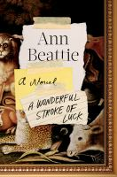 Book cover for A Wonderful Stroke of Luck by Ann Beattie
