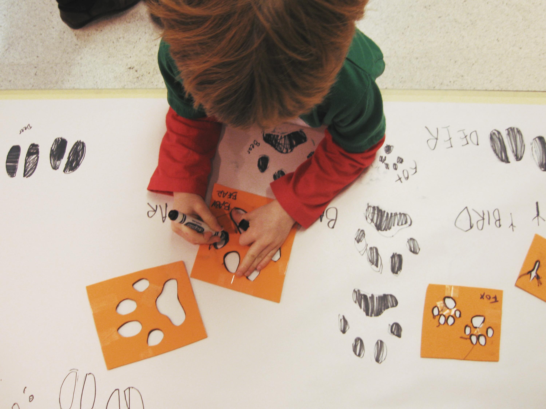 Animals In Winter Preschool Science And Math