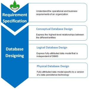 Conceptual Database Model