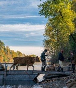 'First Cow': A Profound, Ruminative Western