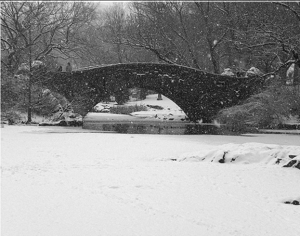 Central Park in Winter. Photo from Creative Commons Flickr.