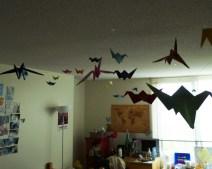 Caroline Chu's room in Lee Hall. Photo by Leah Cordova.