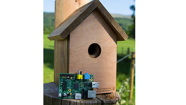 raspberry-pi-bird-box