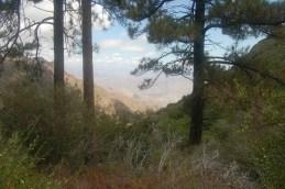 Laguna Mountains 2012